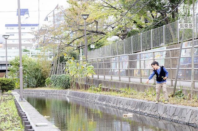 s-1810_umisakura_29
